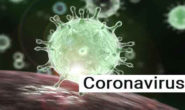 Coronavirus cases surge 1347 in India, death toll at 43